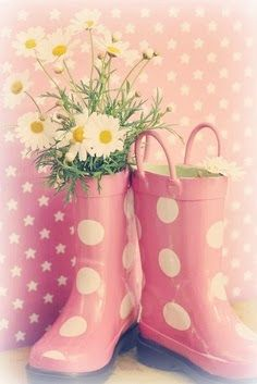 Daisies in pink rain boots...  makes sense to me...  lol  =)