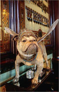 Google Afbeeldingen resultaat voor http://adecorativeaffair.files.wordpress.com/2012/11/jonathan-smith-dog-statue-on-les-trois-garcons-restaurant-59109.jpg