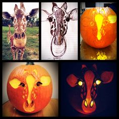 2013 entry via Amanda D., Bridgeport, West Virginia. Think you've got what it takes to carve the perfect pumpkin? Enter the Pumpkin Masters 2014 Carving Contest, October 1st through 31st.