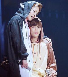 Adorable Xiumin and Jongin in animal onesies.