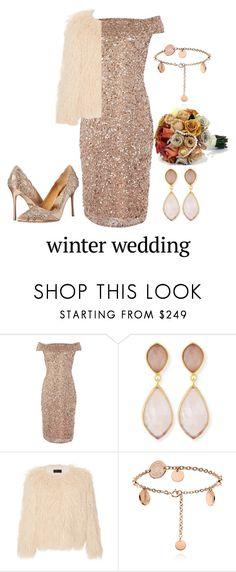 """Winter wedding guest"" by lulalalala ❤ liked on Polyvore featuring Adrianna Papell, Dina Mackney, Nili Lotan and Badgley Mischka"