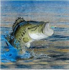 Best 4 Greatest Bass Fishing Lures Tricks - http://bassfishingmaniacs.com/best-4-greatest-bass-fishing-lures-tricks/