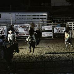 Evening Bull Ride  © Stephanie Peesker  [Taken in Yorkton, Saskatchewan] https://www.facebook.com/FishGirlPhotography