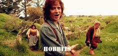 This just makes me smile! He's just like Frodo -- equally exasperated by and fond of hobbits! :)