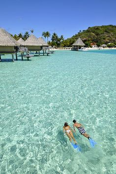 snorkeling at InterContinental Bora Bora Le Moana Resort   Flickr - Photo Sharing!