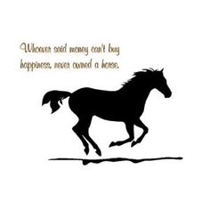 Horse vinyl wall decal-horse quote sticker-26 X 17 inches-by aluckyhorseshoe