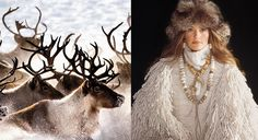 Two images: at left are reindeer, at right is a woman in cream wearing a fur hat