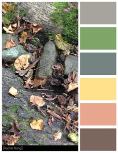 Outdoor Color Scheme #colorscheme