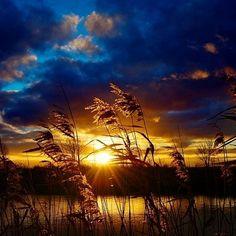 Golden Sunset  Photography by © Xipnos S ----------------------------------------------------------------- #goldensunset #sunset #sunsetlovers