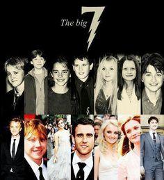 The Big 7: Draco Malfoy, Ron Weasley, Hermione Granger, Neville Longbottom, Luna Lovegood, Ginny Weasley, Harry Potter