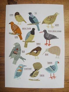 Birds of New Zealand giclee print. Kate Sutton