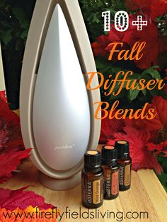 Over 10 Fabulous Fall Diffuser Blends