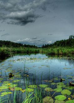 Bottomless Lake, Manitoba......a slough, actually.
