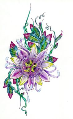 passion flower sketch....rhatbeould be great if the leaves were peacock feathers and the yellow  in the flower was green