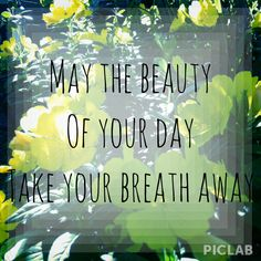 May the beauty of your day take your breath away.