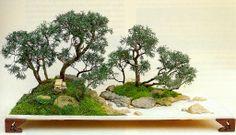 Qingquan Zhao