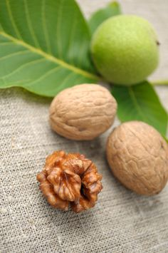 [Full article http://happyforks.com/article/walnuts/3] Walnuts - the best from all the nuts | Do you like nuts? Have you ever wonder which nuts are the most nutritious? The answer is walnuts! It is a great snack while you are studding or working and you need to concentrate. Walnuts are extremely powerful antioxidant, as well as they increase your concentration. Enjoy walnuts during autumn when they are fresh and improve your mood avoidi... [Photo (c) Elfivetrov | Dreamstime.com]