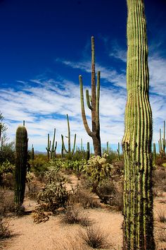 I think every place in Arizona is on my bucket list.