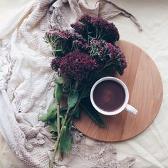 К цветам у меня особое отношение☺️Когда то я занималась орхидеямипродажейЗакупила несколько партий и продавала вк через группуА муж после работы развозил заказыДо сих пор удивляюсь что муж поддерживает все мои идеи#люблюнемогу Орхидеи конечно все раскупили, но я поняла, что это не моё#горшечныецветы И продолжала дальше искать себя...#история_моейжизни#продолжениеследует#предпринимательскаяжилка#декретнаяжизнь