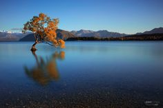 Lake Wanaka New Zealand. Shot by Jerry Enerva.  #amazing_places_to_visit #travel  #vacation  #instatravel #tourist #trip #amazing