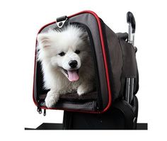 Southwest Airlines Pet Carrier Airport Air Travel Luggage Expandable Two Sides  #PetPuppy