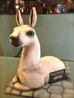 Adorable big Llama cake!