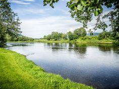 Perfect fishing river at Surnadal.