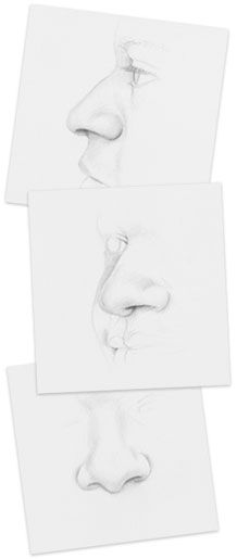 Learn how to draw noses