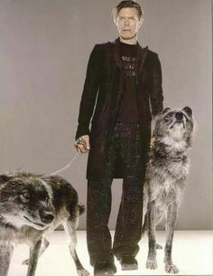David Bowie and some cool looking dogs!