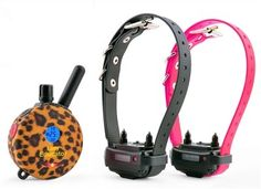 2 Dog Lady Educator E-Collar 1/2 Mile Remote Dog Trainer   FREE INCLUDED Bungee E-Collars FREE SHIPPING ** Be sure to check out this awesome product. (This is an affiliate link and I receive a commission for the sales)