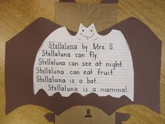 Stationery for Stellaluna lesson