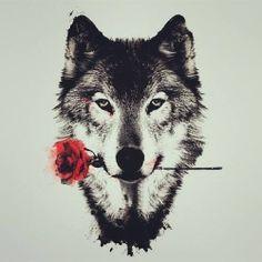 Lobo com uma rosa