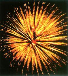 #fireworks - Golden Chrysanthemum