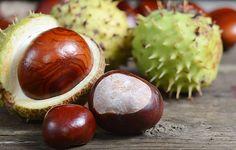 kasztany promieniowanie mydło Coconut, Fruit, Food, Diy, Laundry Detergent Recipe, Conkers, Bricolage, Essen, Do It Yourself