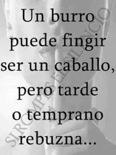 Great Quotes, Me Quotes, Funny Quotes, The Words, Motivational Phrases, Inspirational Quotes, Quotes En Espanol, Funny Phrases, Spanish Quotes