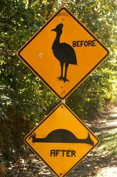 Photo : Humour noir,  Panneaux insolites, Australie. Toutes les photos de CHRISTINE BLANCHET sur L'Internaute