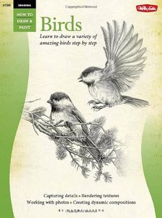 Drawing: Birds: Learn to draw a variety of amazing birds ... http://www.amazon.com/dp/1600583407/ref=cm_sw_r_pi_dp_lvWvxb09PG0GF
