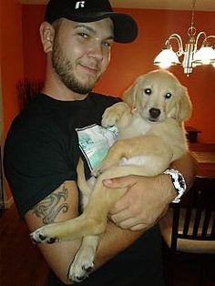 Orlando Florida Golden Retriever Meet Nala A For Adoption