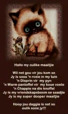 Maatjie Cute Quotes, Best Quotes, Funny Quotes, Qoutes, Good Night Quotes, Good Morning Good Night, Lekker Dag, Afrikaanse Quotes, Goeie More