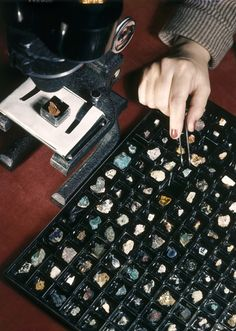 Woman selects a mineral fragment for viewing under a microscope, National Geographic, Willard Culver