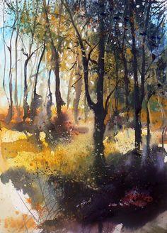 Pete Gilbert | New Forest Artist | Gallery: