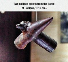 Two collided bullets from #Gallipoli   I have no details on when or where they were dug up or any details of who found them.  If anyone has any information that I could add please message me.