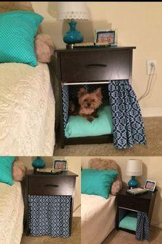 Animal Room, Dog Bedroom, Bedroom Decor, Bedroom Ideas, Dog Room Decor, Puppy Room, Diy Dog Bed, Diy Bed, Dog Furniture