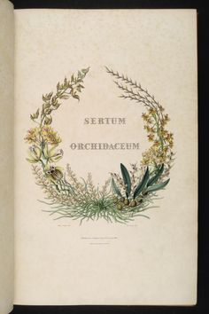 "Title page for 1838 edition of ""Sertum Orchidaceum"" by John Lindley and illustrated by Sarah Ann Drake.   For more images of book: http://www.englishoakbuildings.com/2012/07/09/sertum-orchiaceum/"