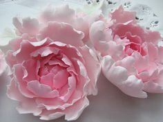 Various Flower Tutorials (Closed Peonies, Lilly, Poinsettia, Ranunculus and Fondant Flower Tutorial, Fondant Flowers, Paper Flowers, Cake Tutorial, Flower Cupcake Cake, Peony Cake, Sugar Paste Flowers, Flower Ornaments, Polymer Clay Flowers