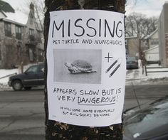 We should have spruced up our missing turtle sign like this one when Mertle went missing (she did come back on her own, three months later)