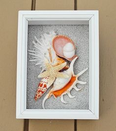 BEACH DECOR Seashell Collage Shadow Box, Orange And White, Natural Shells,  White Frame