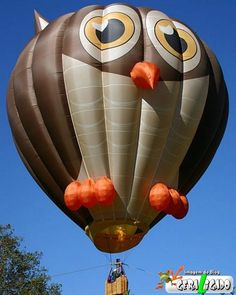 Owl hot air balloon
