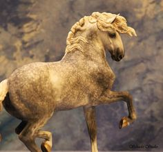 Model horse - SAMSUNG CSC - by Dani Schacht