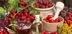 Vydejte se na šípky a připravte si z nich léčivé dobroty! | JenŽeny.cz Angina Pectoris, Vitamin C, Korn, Food And Drink, Fruit, Health, Tees, Apple Wine, Fresh Fruit